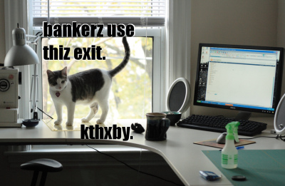 LOLcat says bankers use teh window